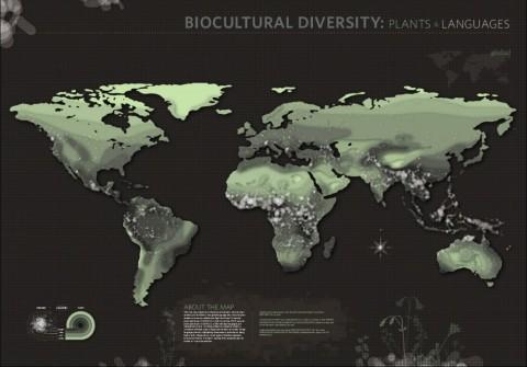 GLOB_plants_IMG-1024x715