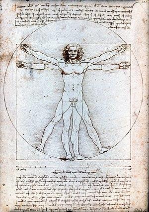 300px-Vitruvian_Man_by_Leonardo_da_Vinci